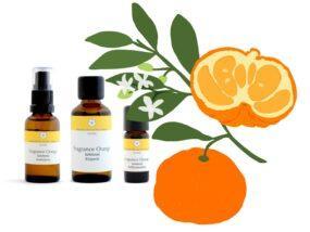 Fragrance Orange