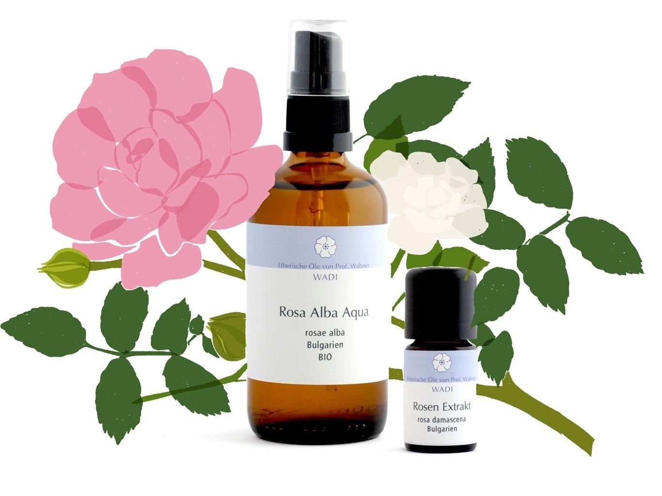 Der Duft des Herzens - Rosen Extrakt und Rosa Alba Wasser